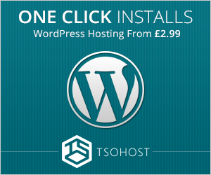 fast and cheap web hosting